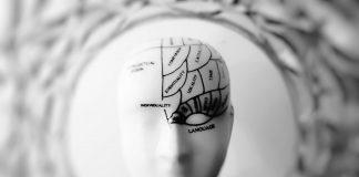 Diplomado de Neuropsicología